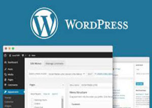 wordpress developer, web designer